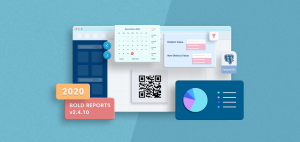 What's New in the Bold Reports v2.4.10 Release