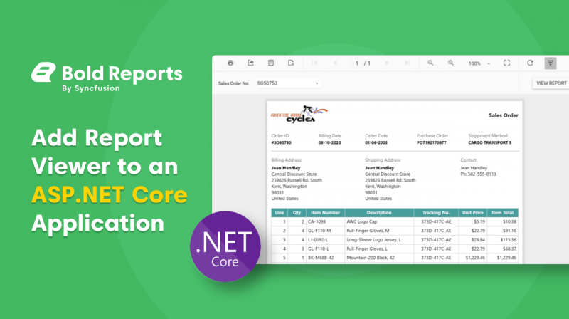Add Report Viewer to an ASP.NET Core Application