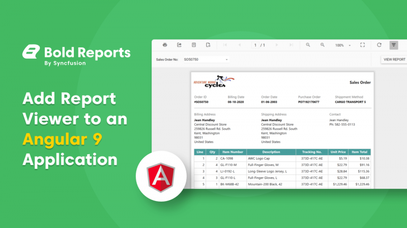 Add Report Viewer to an Angular 9 Application